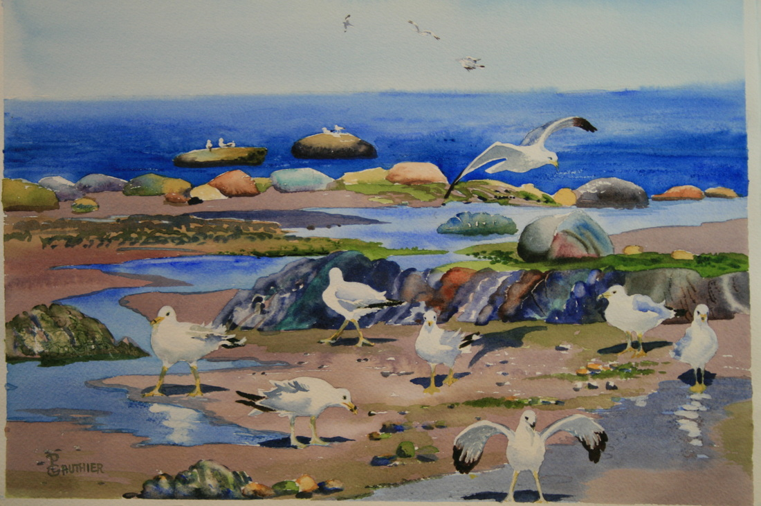 Watercolor painting of Seagulls