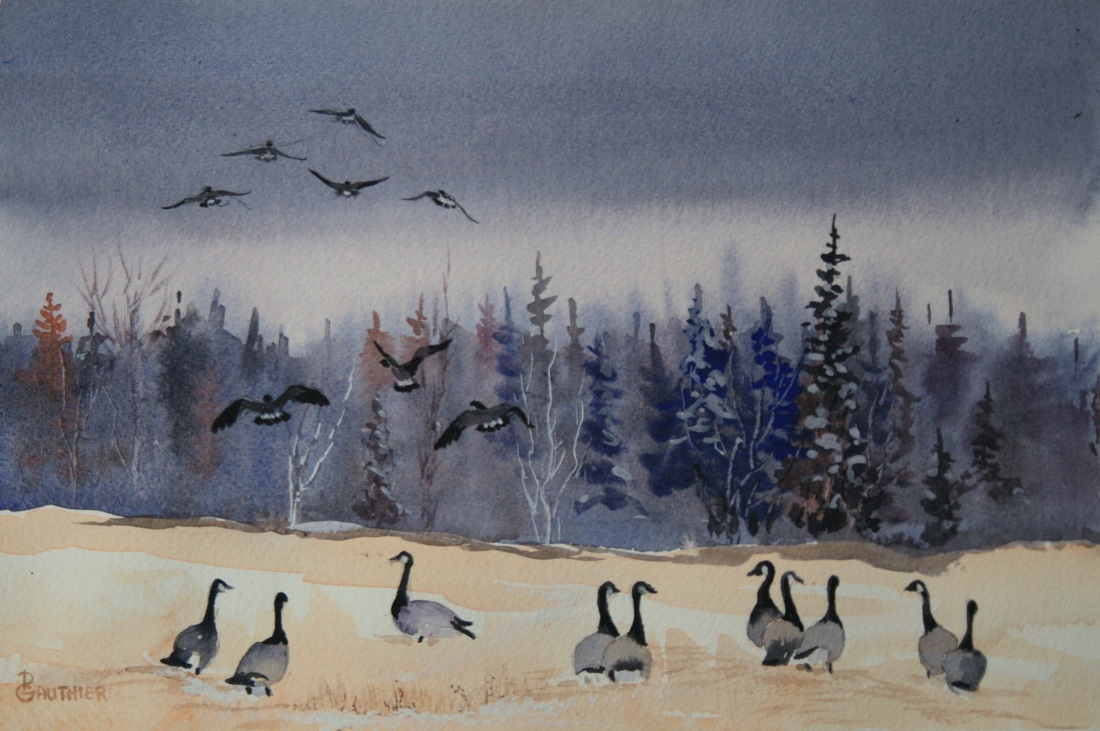 Watercolor painting of Canadian Geese