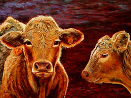 Acrylic painting of Calves