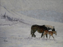 mare and foal in a snow storm